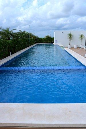 opal-suites-alberca-playa-del-carmen.jpg