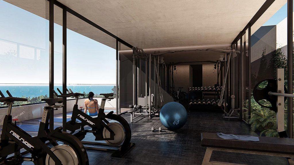 ceren gym playa del carmen